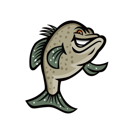 Mascot icon illustration of a crappie, croppie, papermouths, strawberry bass, speckled bass, specks, speckled perch, crappie bass or calico bass, standing up viewed from front done in retro style.