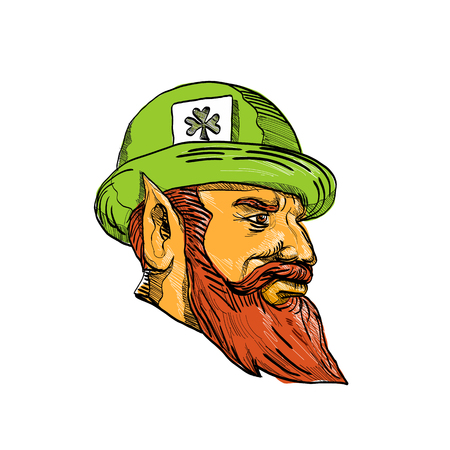 Drawing sketch style illustration of a head of a leprechaun, type of fairy in Irish folklore wearing a bowler hat with clover leaf card viewed from side on isolated background. Illustration