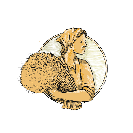 Drawing sketch style illustration of female Russian or Eastern European wheat farmer or organic farmer holding a bunch of wheat stalk looking forward set inside circle on isolated background.