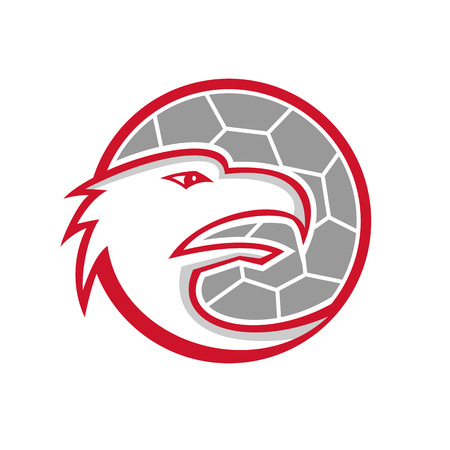 Mascot icon illustration of head of a European eagle inside handball, fieldball or team handball ball viewed from side on isolated background in retro style.