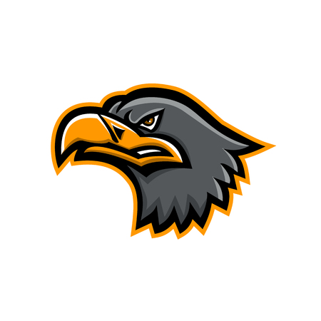 Mascot icon illustration of head of a Eurasian sea eagle,also known as gray sea eagle,white-tailed eagle,ern or erne viewed from side on isolated background in retro style.