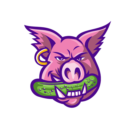 Mascot icon illustration of head of a pink wild pig, boar or hog biting a pickle or gherkin, a pickled cucumber wearing an earring on isolated background in retro style.