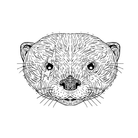 Mascot icon illustration of head of an Asian small clawed otter with lightning bolt tattooed on right eye viewed from front on isolated background in black and white retro style. Illustration