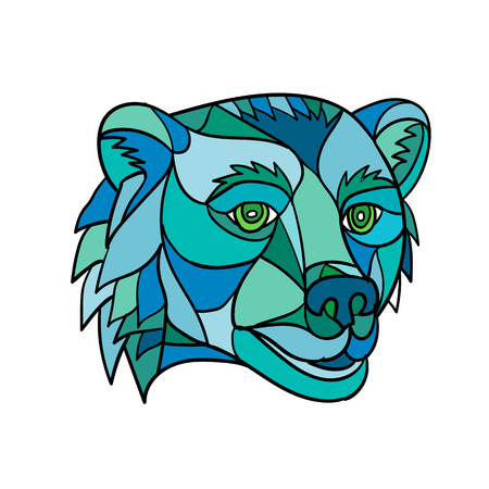 Low polygon mosaic style illustration of a grizzly bear or brown bear head on isolated background.
