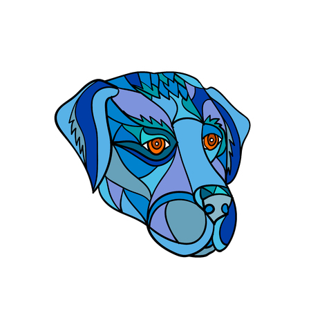 Mosaic low polygon style illustration of a labrador or golden retriever dog head looking to side on isolated white background in color.