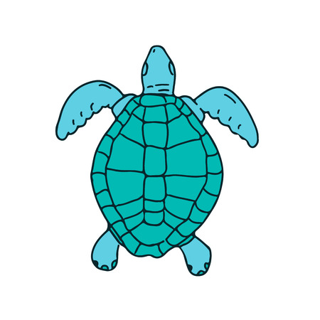 Drawing sketch style illustration of a  a sea turtle swimming viewed from top  on isolated white background.