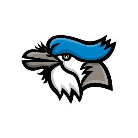 Mascot icon illustration of head of a blue jay (Cyanocitta cristata), a passerine bird in the family Corvidae, native to North America looking up viewed from side on isolated background in retro style.