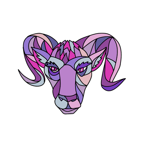 Mosaic low polygon style illustration of a head of a bighorn sheep ram viewed from front on isolated white background in color.