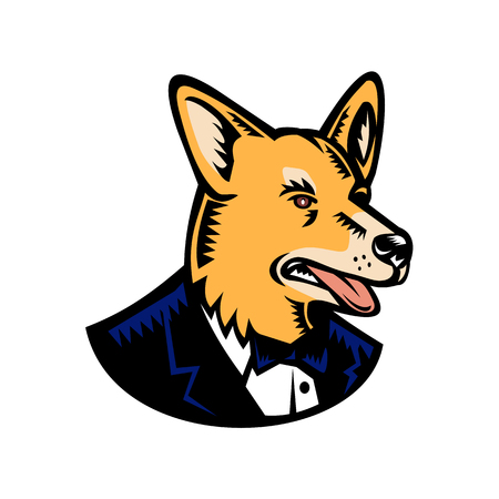 Retro woodcut style illustration of a Welsh Corgi or Pembroke Welsh Corgi dog wearing a tuxedo coat and tie looking to side on isolated white background done in color. Illustration
