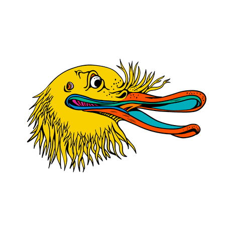 Graffitti style illustration of an angry and aggressive kiwi head, a flightless bird native to New Zealand, looking to side on isolated background in cartoon full color. Vettoriali