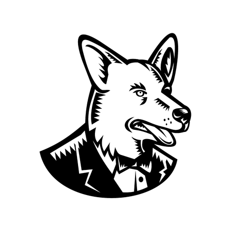 Retro woodcut style illustration of a Pembroke Welsh Corgi dog wearing a tuxedo coat and tie looking to side on isolated white background done in black and white.