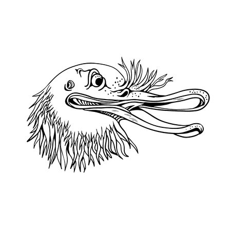Cartoon and graffitti style illustration of an angry and aggressive kiwi head, a flightless bird native to New Zealand, looking to side on isolated background in black and white. Illustration