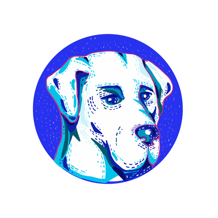 Doodle art illustration of head of a Labrador Retriever or Lab, a type of retriever-gun dog set inside circle done in retro style.