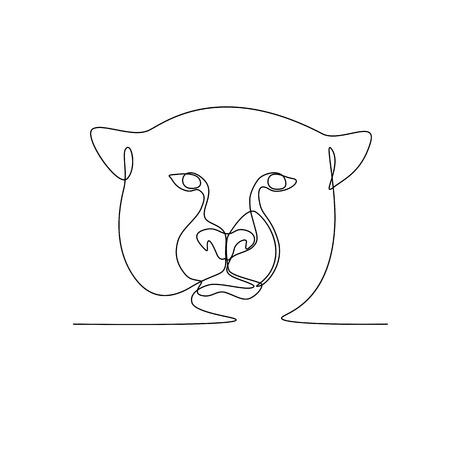Continuous line illustration of cheetah or big cat head viewed from front  done in black and white monoline style. Illustration