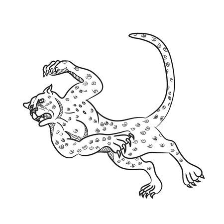 Cartoon style illustration of a cheetah running, tripping and then falling down done in black and white on isolated background. Illustration