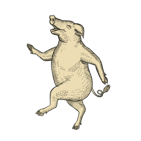 Drawing sketch style illustration of a jolly and happy pig dancing, walking or taking a stride viewed from side on isolated white background.