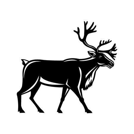 Retro style illustration of a reindeer, also known as the caribou in North America, walking viewed from side on isolated background.