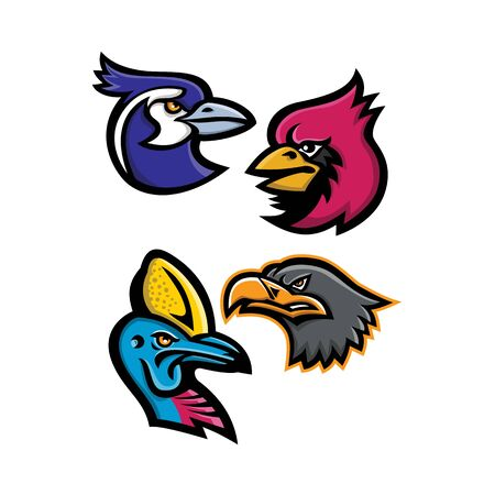 Mascot icon illustration set of heads of bird wildlife like the black throated magpie, cardinal, cassowary and the european eagle viewed from side  on isolated background in retro style.