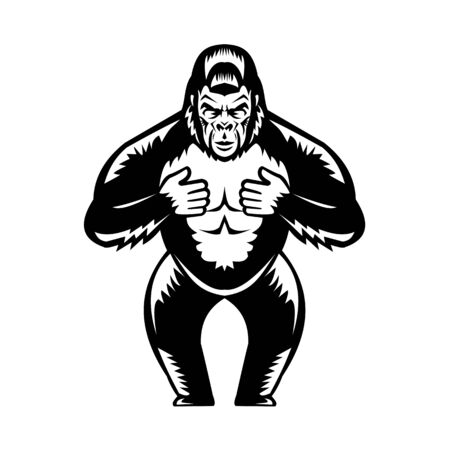 Retro woodcut style illustration of a silverback gorilla  thumping or beating its chest viewed from front on isolated background done in black and white. Illustration
