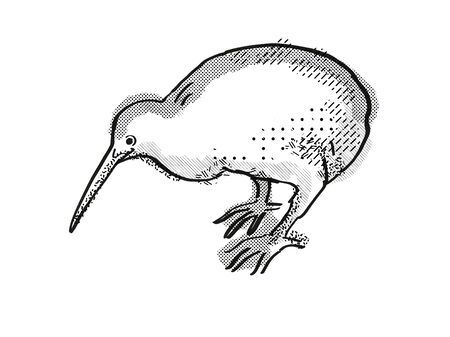 Retro cartoon style drawing of a kiwi , a New Zealand bird on isolated white background done in black and white Фото со стока