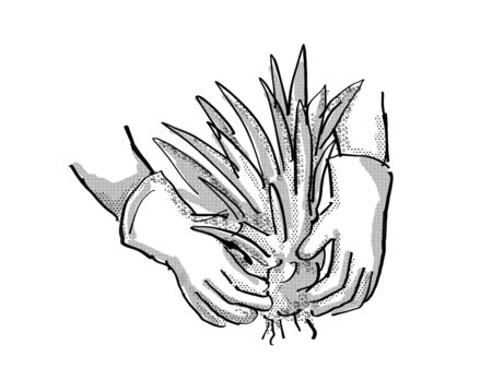 Retro cartoon style drawing of a gardener hand planting a plant on isolated white background done in black and white