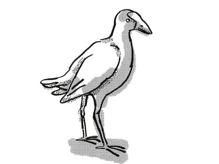 Retro cartoon style drawing of a pukeko or purple swamphen  , a New Zealand bird on isolated white background done in black and white
