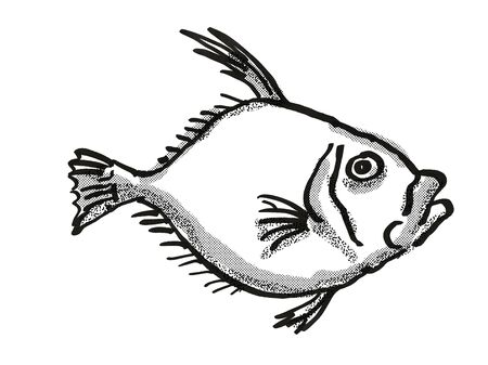 Retro cartoon style drawing of a Silver Dory, a native New Zealand marine life species viewed from side on isolated white background done in black and white