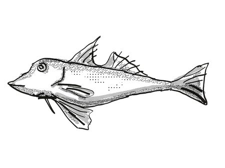 Retro cartoon style drawing of a red gurnard, a native New Zealand marine life species viewed from side on isolated white background done in black and white 版權商用圖片