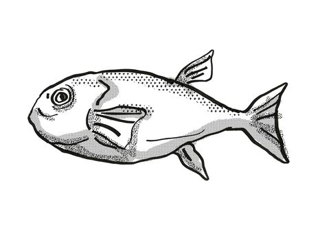 Retro cartoon style drawing of a Brownback Toadfish , a native Australian marine life species viewed from side on isolated white background done in black and white.