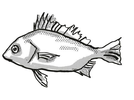 Retro cartoon style drawing of a Silver Javelin , a native Australian marine life species viewed from side on isolated white background done in black and white.