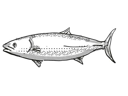 Retro cartoon style drawing of a kingfish, a native New Zealand marine life species viewed from side on isolated white background done in black and white Stok Fotoğraf