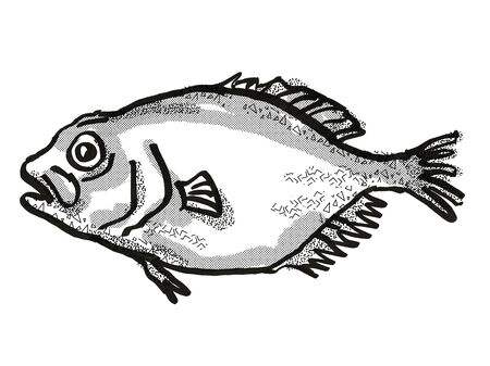 Retro cartoon style drawing of an orange roughy, a native New Zealand marine life species viewed from side on isolated white background done in black and white 版權商用圖片