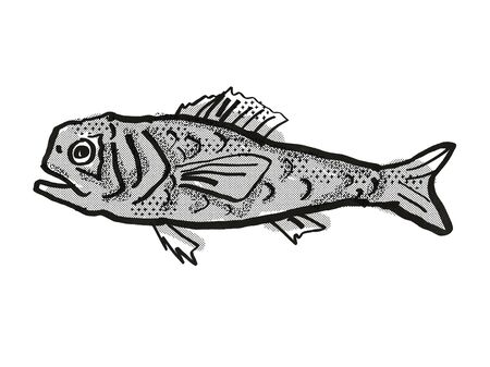 Retro cartoon style drawing of a Shoulderspine Bigscale fish  , a native Australian marine life species viewed from side on isolated white background done in black and white. Imagens