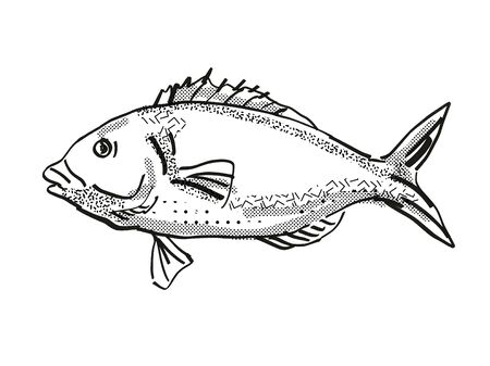 Retro cartoon style drawing of a tarakihi, a native New Zealand marine life species viewed from side on isolated white background done in black and white