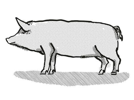 Retro cartoon style drawing of a Tamworth sow or boar, a pig breed viewed from side on isolated white background done in black and white