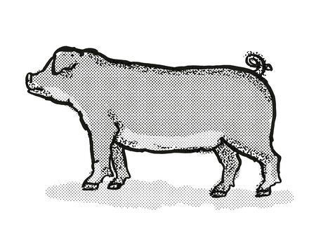 Retro cartoon style drawing of a Duroc sow or boar, a pig breed viewed from side on isolated white background done in black and white