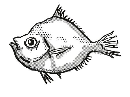 Retro cartoon style drawing of a Malayan Deepsea Boarfish , a native Australian marine life species viewed from side on isolated white background done in black and white.