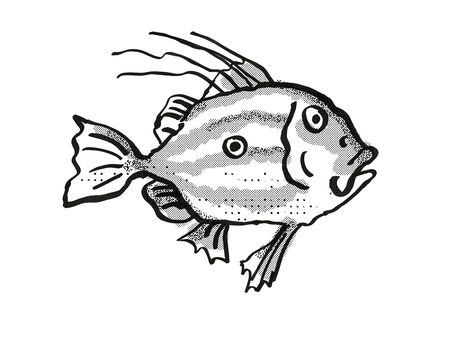 Retro cartoon style drawing of a John Dory, a native New Zealand marine life species viewed from side on isolated white background done in black and white