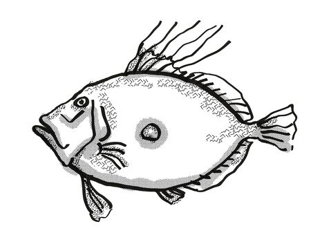 Retro cartoon style drawing of a King Dory, a native New Zealand marine life species viewed from side on isolated white background done in black and white