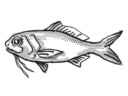 Retro cartoon style drawing of a Berndts Beardfish , a native Australian marine life species viewed from side on isolated white background done in black and white.