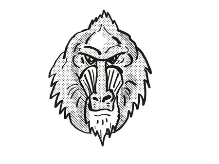 Retro cartoon style drawing head of a Mandrill, a monkey species viewed from front on isolated white background done in black and white