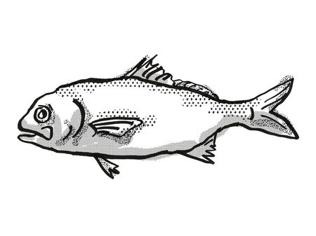 Retro cartoon style drawing of a Busakhins Beardfish , a native Australian marine life species viewed from side on isolated white background done in black and white.
