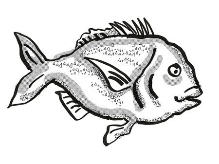Retro cartoon style drawing of a snapper fish, a native New Zealand marine life species viewed from side on isolated white background done in black and white