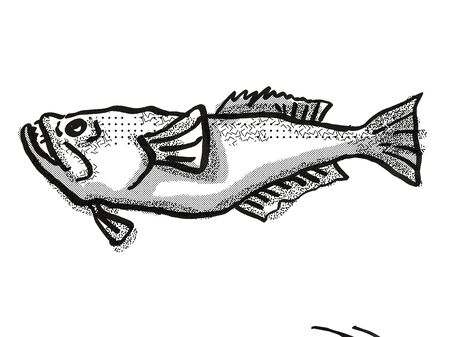 Retro cartoon style drawing of a stargazer, a perciform fish native New Zealand marine life species viewed from side on isolated white background done in black and white