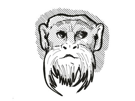 Retro cartoon style drawing head of an Emperor Tamarin , a monkey species viewed from front on isolated white background done in black and white