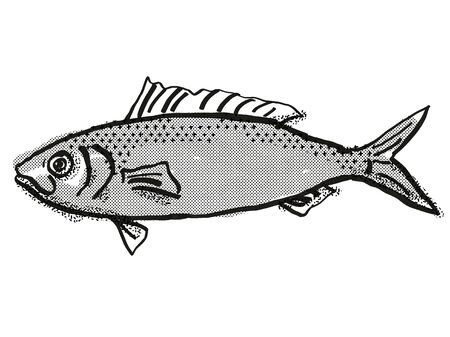 Retro cartoon style drawing of a Australian Herring , a native Australian marine life species viewed from side on isolated white background done in black and white.