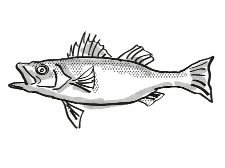 Retro cartoon style drawing of a Japanese Seaperch  , a native Australian marine life species viewed from side on isolated white background done in black and white.