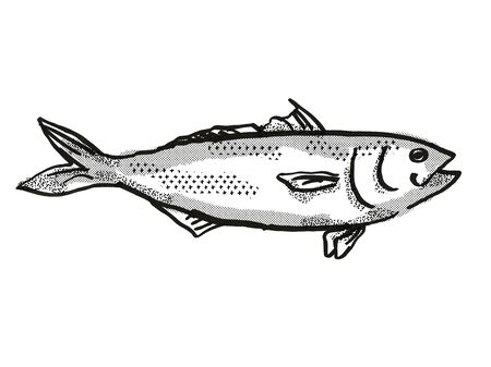 Retro cartoon style drawing of a Eastern Australian Salmon , a native Australian marine life species viewed from side on isolated white background done in black and white.