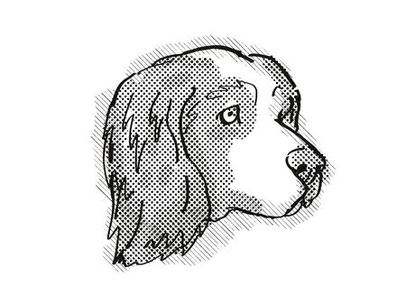 Retro cartoon style drawing of head of a Clumber Spaniel, a domestic dog or canine breed on isolated white background done in black and white.