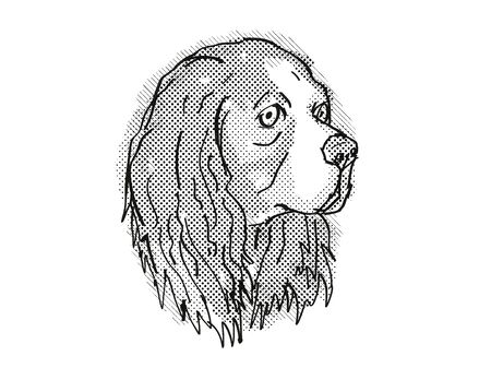 Retro cartoon style drawing of head of a Cavalier King Charles Spaniel, a domestic dog or canine breed on isolated white background done in black and white.
